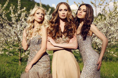 Gorgeous girls in luxurious sequin dresses posing in blossom garden. Fashion outdoor photo of beautiful charming girls in luxurious sequin dresses posing in royalty free stock photo