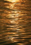 Gorgeous gold color sea water surface with the gentle waves glittering by morning sunlight. Nature Background royalty free stock photos