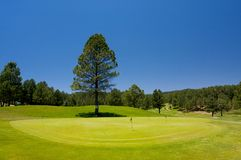 Gorgeous golf course in Arizona Royalty Free Stock Image