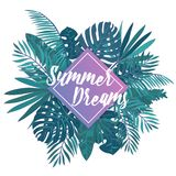 Gorgeous hand lettering Summer Dreams against purple square and green tropical palm leaves on background. Elegant Royalty Free Stock Images