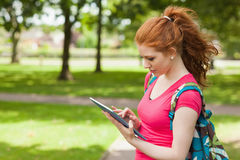 Gorgeous happy student using tablet Stock Images