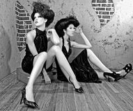 Gorgeous High Fashion Women Posing stock images