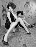 Gorgeous High Fashion Women Posing royalty free stock photo