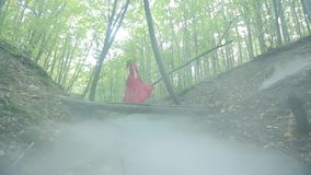 Gorgeous Lady In A Mysterious Foggy Forest stock video footage