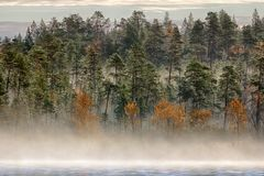 Gorgeous autumn landscape with river and misty forest stock photos