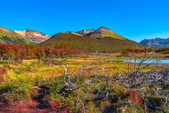 Gorgeous Landscape Of Patagonia& X27;s Tierra Del Fuego National Park Stock Images