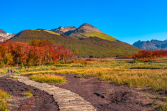 Gorgeous landscape of Patagonia& x27;s Tierra del Fuego National Park. In Autumn, Argentina royalty free stock image