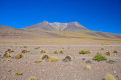 Gorgeous landscapes of Sur Lipez, South Bolivia Stock Photography