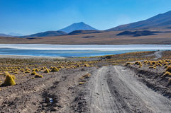 Gorgeous landscapes of Sur Lipez, South Bolivia Stock Images