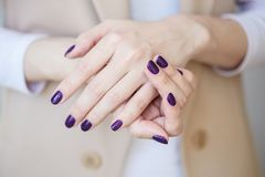 Gorgeous manicure, dark purple tender color nail polish, closeup photo. Female hands over simple background of casual clothes. Purple nail polish royalty free stock photography