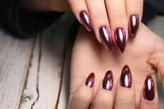 Gorgeous manicure, dark purple tender color nail polish, closeup photo stock photography
