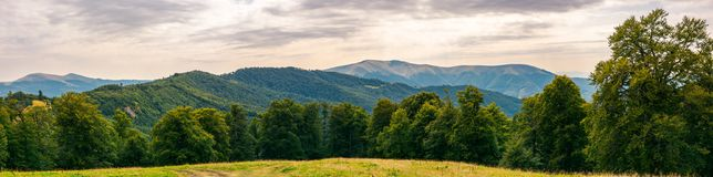 Gorgeous mountain panorama in summer afternoon. Primeval beech forest around alpine meadow. distant ridge beneath the cloudy sky Stock Photo