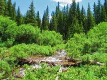 Gorgeous Mountain Scene Royalty Free Stock Images