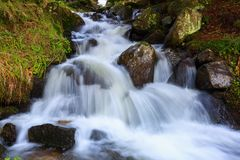A gorgeous mountain waterfall flows among green forest. Stock Image