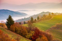 Gorgeous mountainous countryside at sunrise. Beautiful rural area. distant valley full of fog stock images