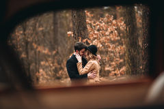 Gorgeous newlywed bride and groom posing in pine forest near retro car in their wedding day.  Stock Photo