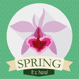 Gorgeous Orchid in Flat Design for Spring Season, Vector Illustration Royalty Free Stock Photography