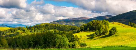 Gorgeous panorama of mountainous landscap. E. woods and grassy alpine meadow in evening light. distant ridge banath a heavy cloud on a blue sky Stock Photo