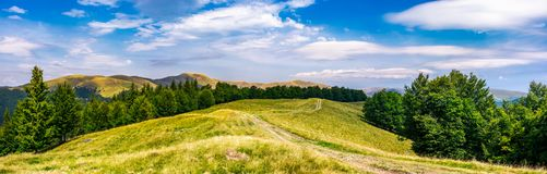 Gorgeous panorama of Svedovets mountain ridge. Country road runs in to the distance through grassy meadow among the ancient forest, great location for hiking Stock Photography