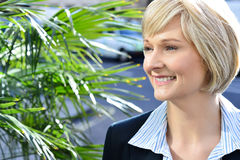 Gorgeous pretty smart business lady Stock Photos