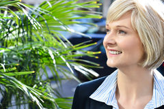 Gorgeous pretty smart business lady Royalty Free Stock Image