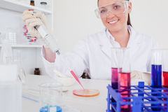 Gorgeous red-haired scientist using a pipette. In a lab Stock Photo