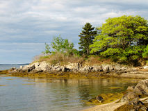 Gorgeous Rocky Coast and Shore on a Maine Island Stock Photo