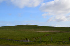 Gorgeous Rolling Hills and Fields on the Cliff`s of Moher Stock Image