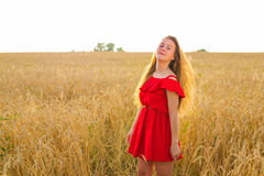 Gorgeous Romantic Girl Outdoors. Beautiful Model in Short Red Dress in Field. Long Hair Blowing in the Wind. Backlit. Warm Color Tones royalty free stock photos