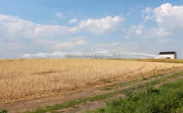 Gorgeous scene of plowed fields and greenhouses Royalty Free Stock Photo