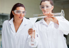Gorgeous scientists doing an experiment Stock Image