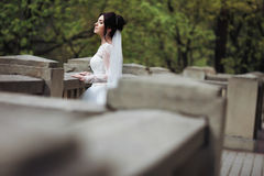 Gorgeous, sensual brunette bride in white dress posing on old st Royalty Free Stock Image