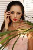 Gorgeous sensual woman with dark hair and bright makeup stock images