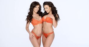Gorgeous shapely women in orange lingerie. Two happy smiling gorgeous shapely women in orange lingerie posing arm in arm  three quarter over white with copyspace stock video