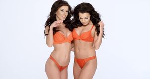Gorgeous shapely women in orange lingerie. Two happy smiling gorgeous shapely women in orange lingerie posing arm in arm  three quarter over white with copyspace stock footage