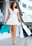 Gorgeous shopping woman Royalty Free Stock Photos