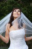 Gorgeous Smiling Bride Royalty Free Stock Images