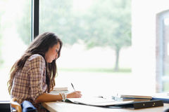 Gorgeous student working Stock Photography