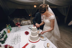 Gorgeous stylish happy bride and elegant groom cutting delicious Stock Images