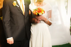 Gorgeous stylish happy bride and groom standing near orange wood Stock Images