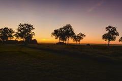 Gorgeous sunrise in Africa, Safari. Kenya Royalty Free Stock Photography