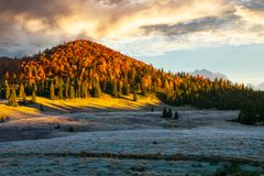 Gorgeous sunrise in mountains. Forest in fall color. distant mountain lit by rising sun stock photo