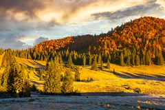 Gorgeous sunrise in mountains. Forest in fall color. distant mountain lit by rising sun. meadow in golden light stock photography