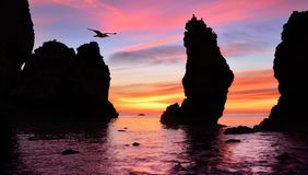 Gorgeous sunrise at the ocean stock image