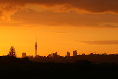 Gorgeous Sunset over Auckland Stock Photography