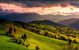 Gorgeous sunset over Carpathian mountains. Beautiful countryside with forested rolling hills and grassy rural fields. spectacular reddish cloudy sky Royalty Free Stock Image