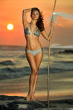 Gorgeous swimsuit model posing on the beach. stock photos