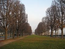 A gorgeous tree lined grassy plaza in Paris stock photo