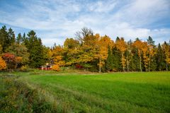 Gorgeous view of countryside landscape on autumn day. Green yellow trees and green grass field on blue sky. Gorgeous view of countryside landscape on autumn day royalty free stock photography