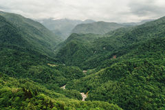 Gorgeous view on the green mountain Stock Photo